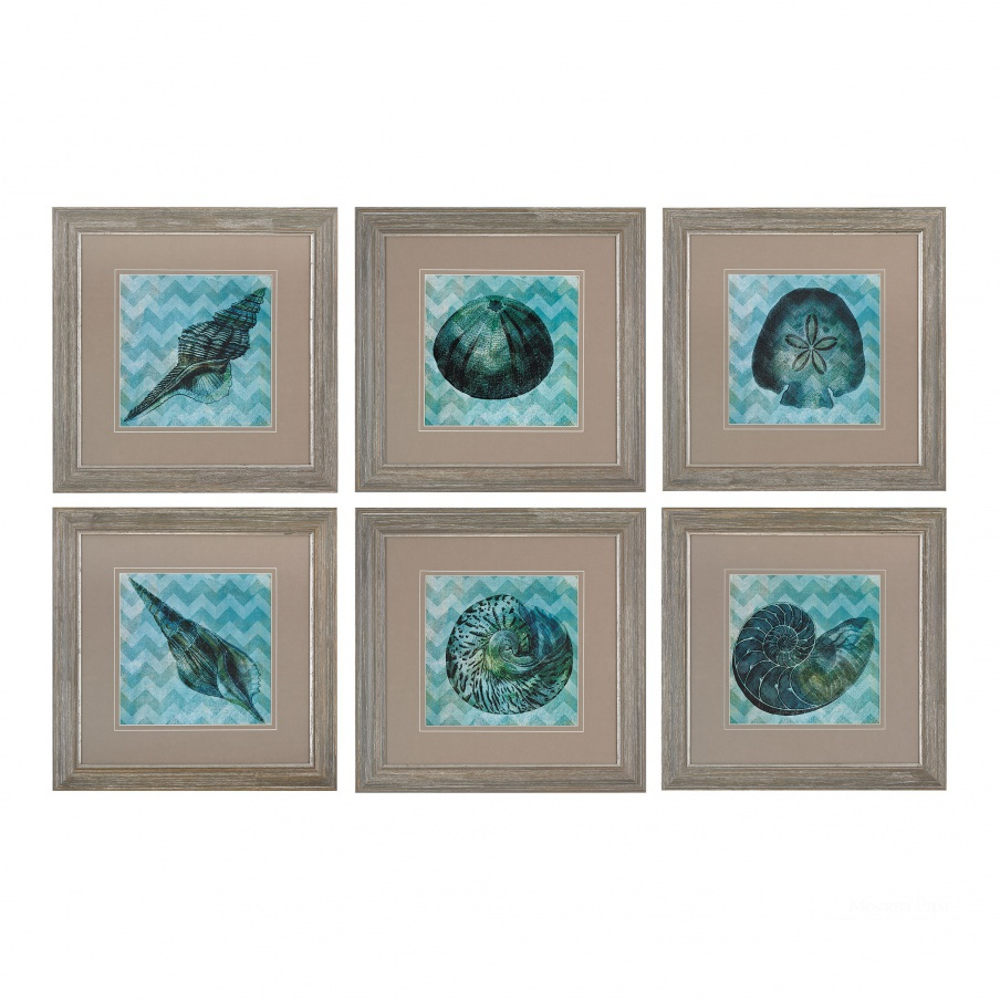 Картина Chevron Shell I, II, III, IV,V,VI -Print Under Glass Wall Art Dimond Home