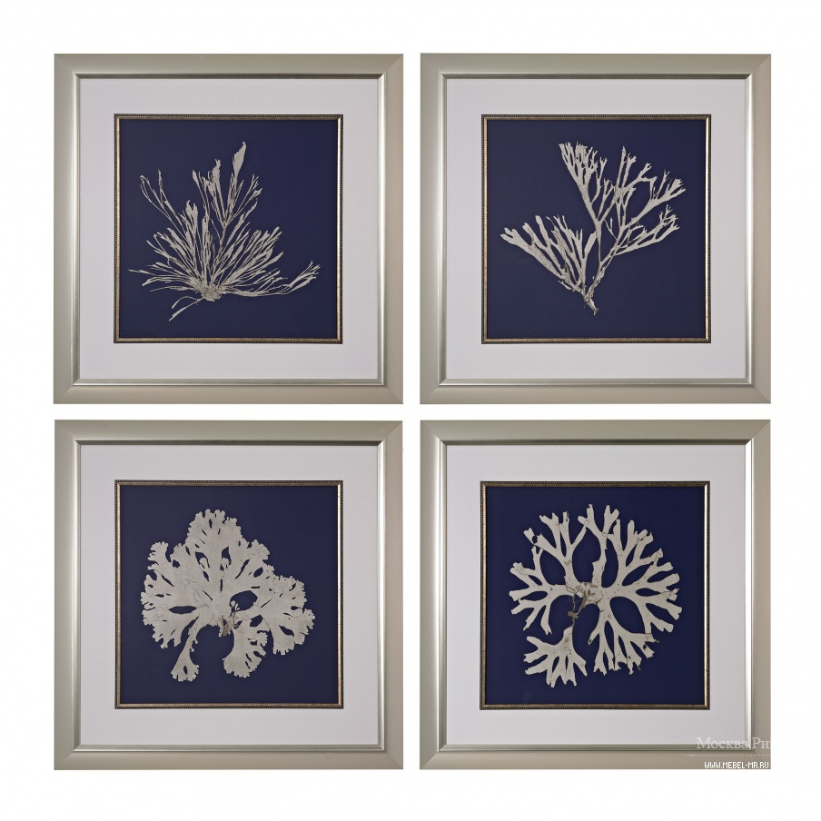 Картина Seaweed On Navy I, II, III, IV - Fine Art Giclee Under Glass Dimond Home