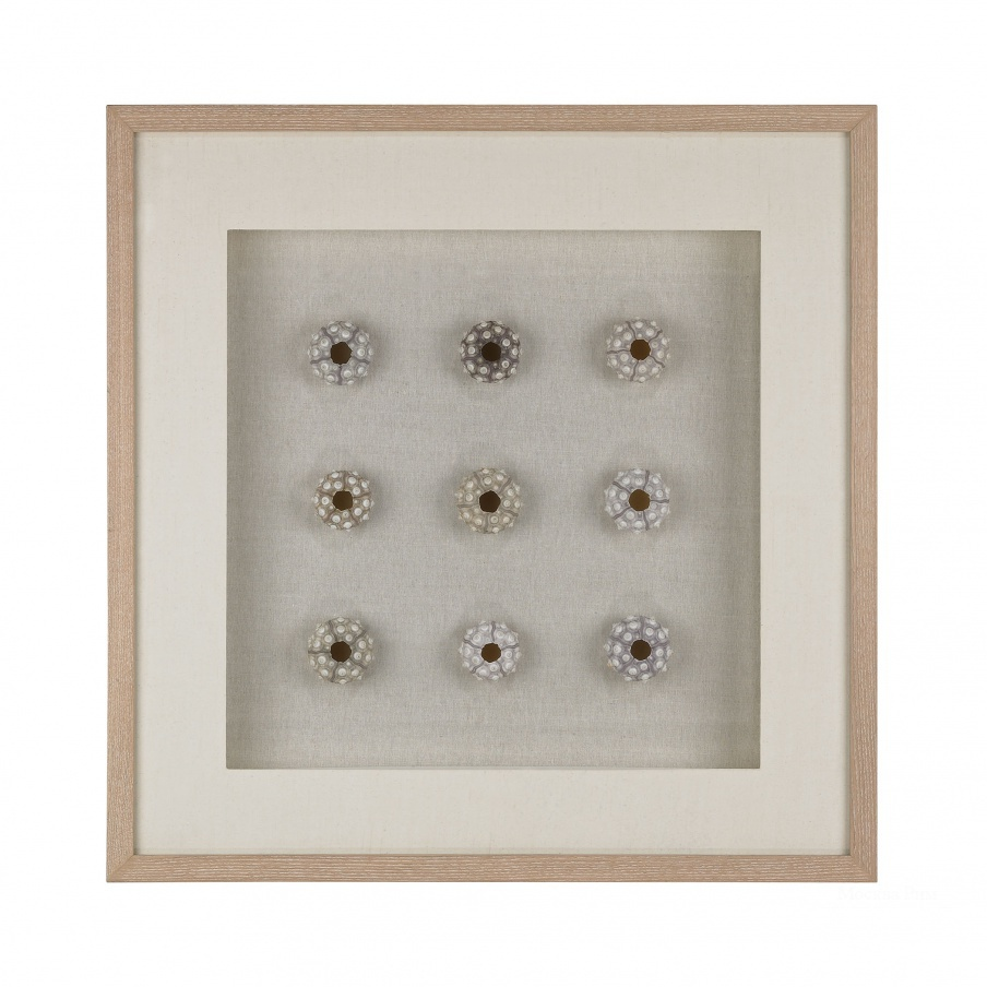 Настенный декор Sea Urchin Wall D Dimond Home