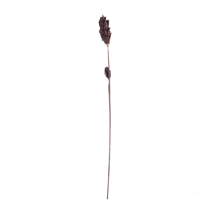 Аксессуар Black Corn Leaf Pole Dimond Home